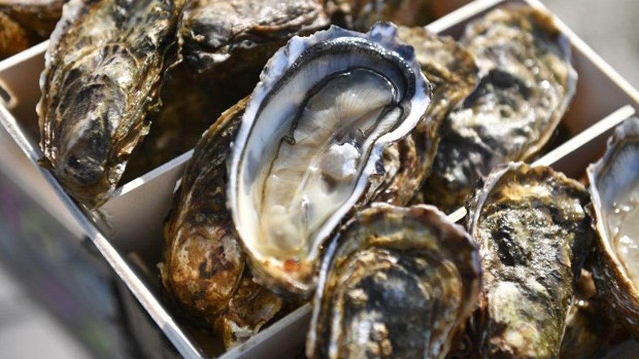 La sécheresse en France, en 2018, fait que les huîtres sont plus petites cette année. Les prix devraient légèrement s'en ressentir.