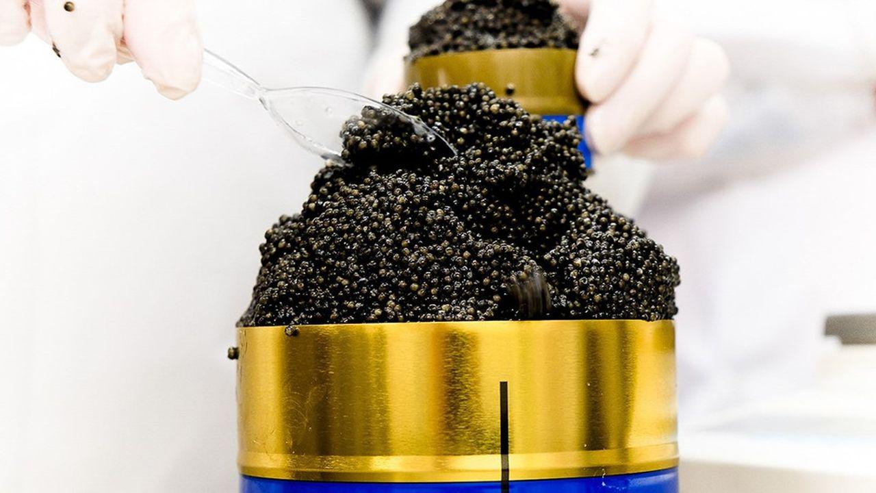 La Manufacture Prunier produit jusqu'à 13 tonnes de caviar par an en Dordogne et dans le Gers.