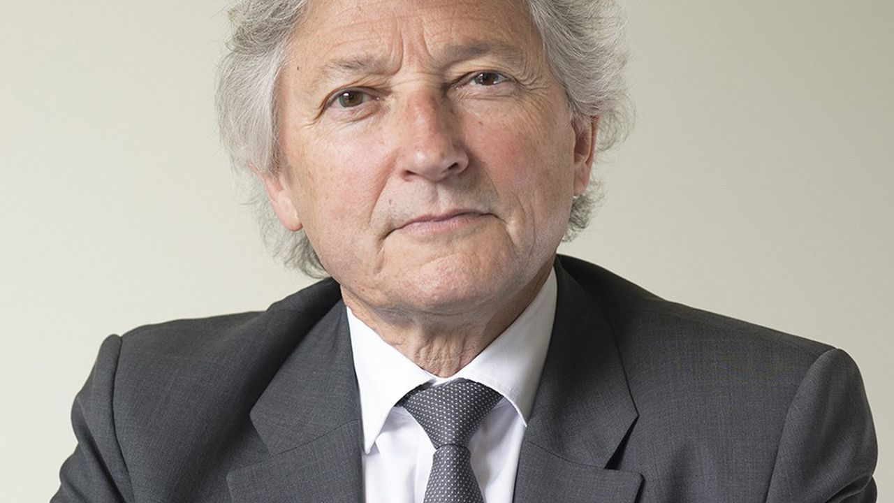 Dominique Rousseau se dit «hostile aux référendums car ils sont un faux ami de la démocratie».
