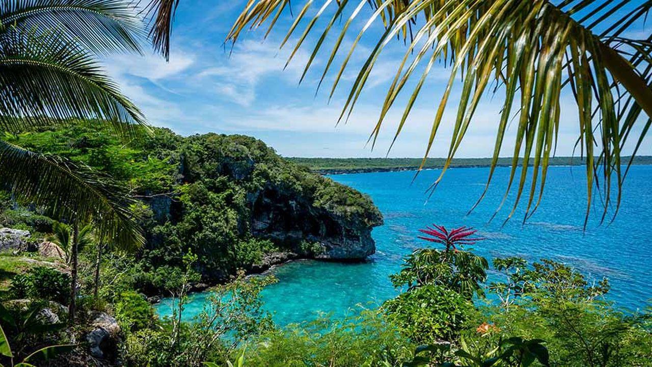 La Nouvelle-Calédonieest un haut lieu de la biodiversité mondiale