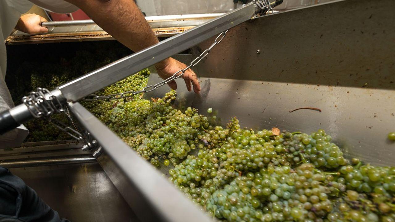 Le crémant est présent dans huit appellations: l'Alsace, Bordeaux, la Bourgogne, Die, le Jura, Limoux, la Loire, la Savoie.