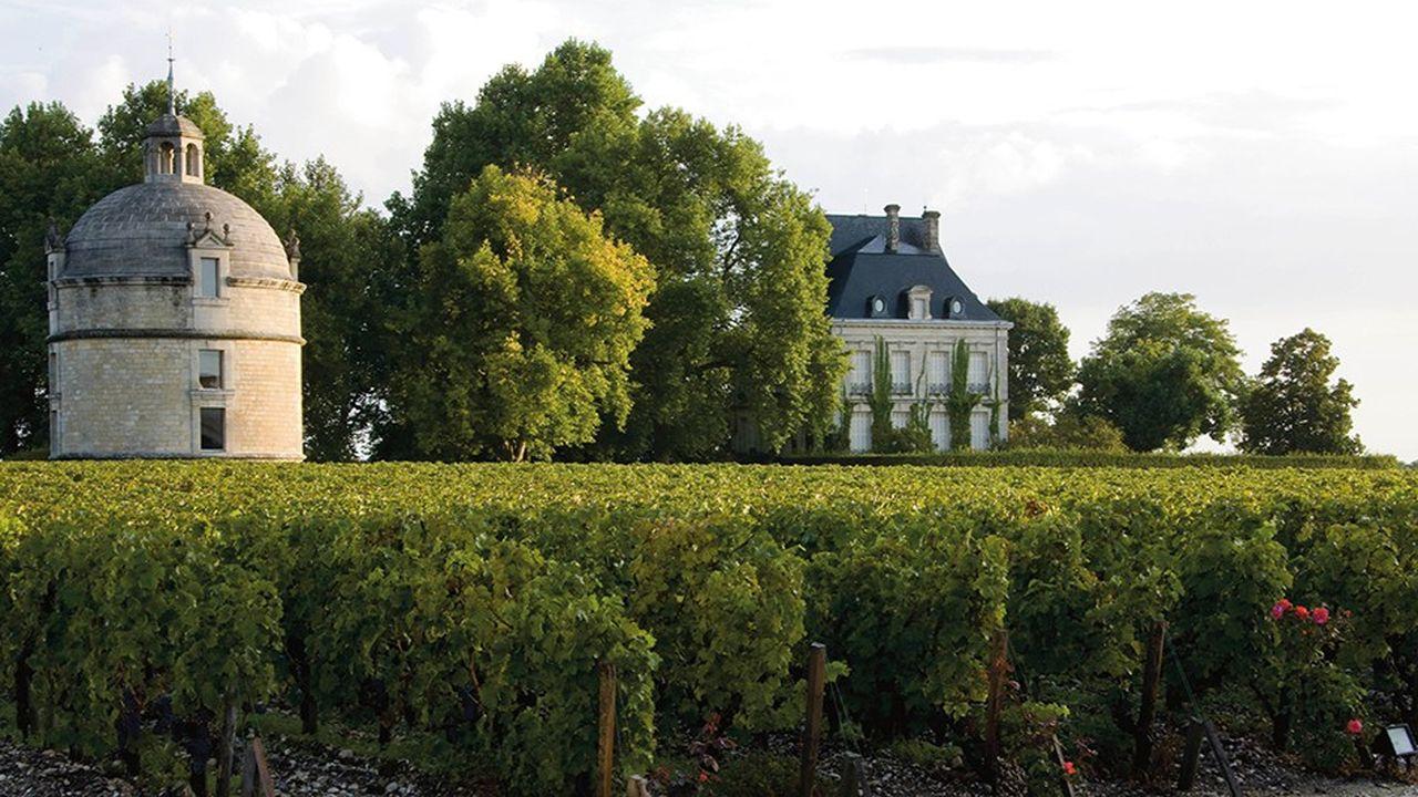 Dans le Bordelais, seules 8% des surfaces sont cultivées en bio, car la plupart des domaines n'ont pas les moyens des grandes étiquettes.