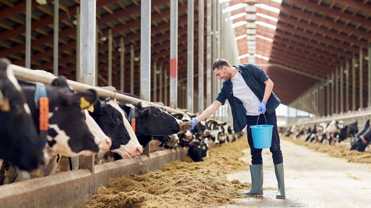 L'agence américaine pour l'environnement (EPA) estime à 4% la contribution de l'élevage aux émissions de gaz à effet de serre, contre 28% pour les transports et l'énergie