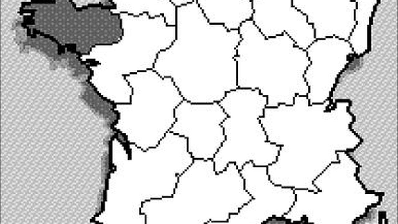 ECH17600260_1.jpg