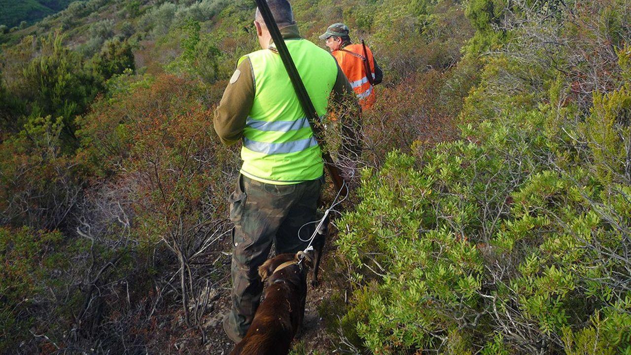 Les chasseurs vont être impliqués dans la gestion adaptative des espèces comme les sangliers, dont la prolifération devient problématique pour l'agriculture.
