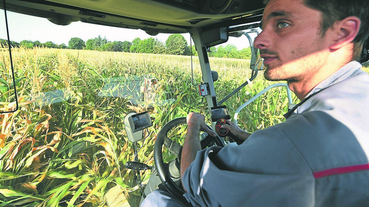 Les céréaliers étaient plus nombreux que les éleveurs à renoncer à leur métier en 2017 après six années d'exploitation