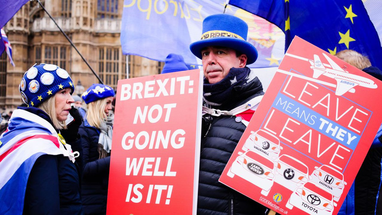 Un activiste anti-Brexit manifeste devant le palais de Westminster, le 29janvier 2019.
