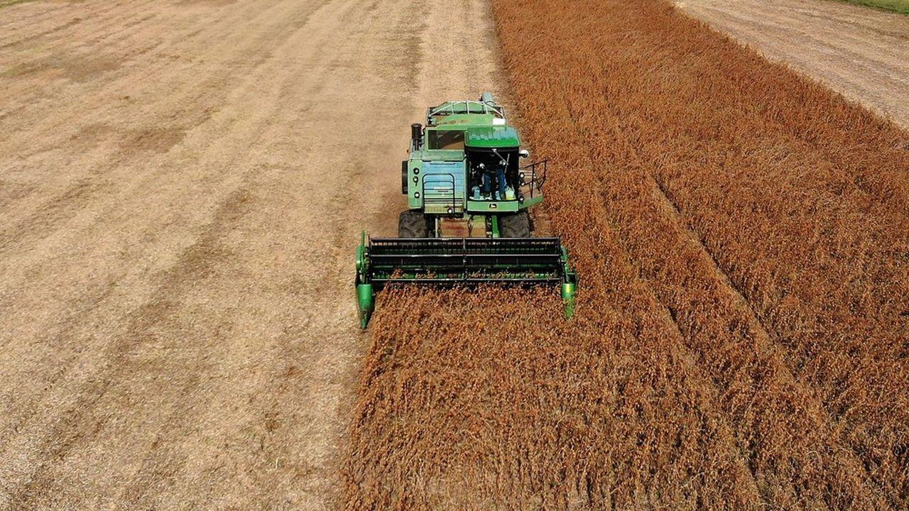 Pékin n'avait rien acheté depuis la mise en place en juillet dernier de droits de douane chinois sur le soja américain.