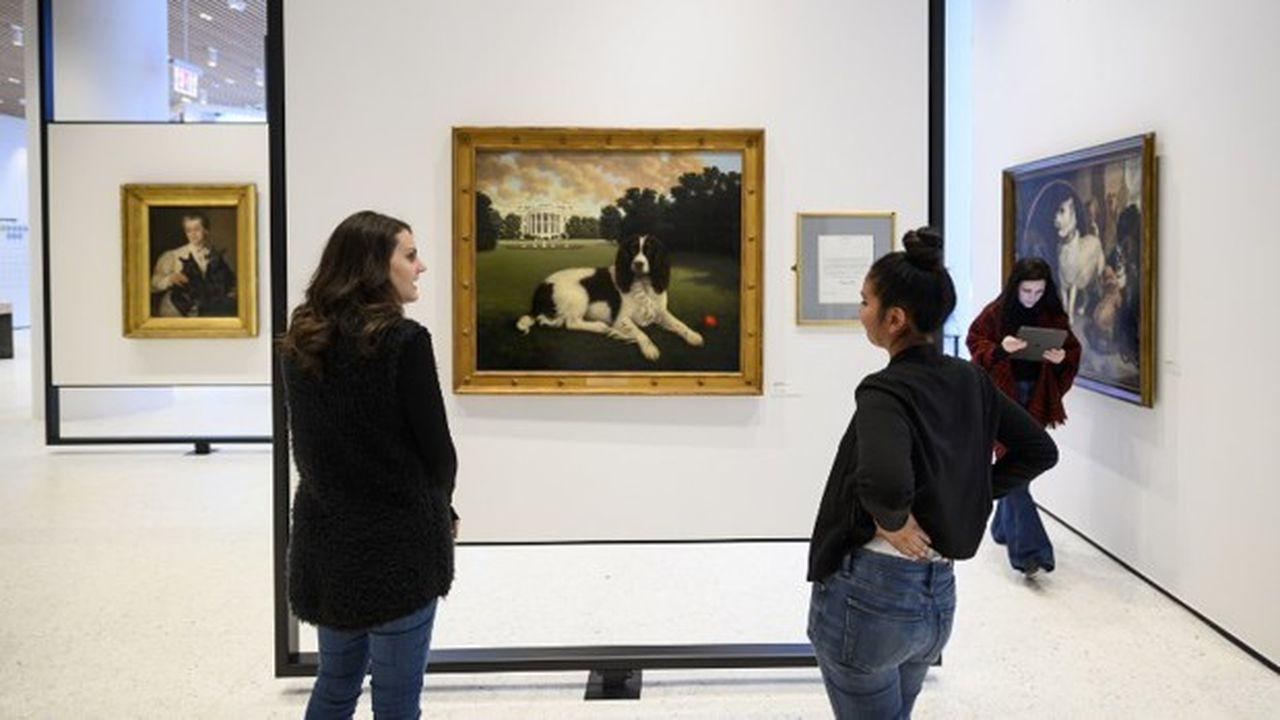 Au musée du chien, à New York (devant une oeuvre de Millie Bush)