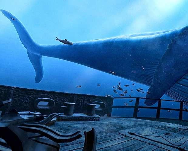 Marcher sur la proue d'une épave et se retrouver nez à nez avec une baleine grâce à la réalité virtuelle.
