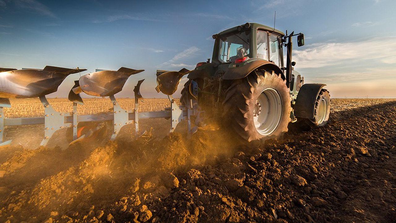Le Royaume-Uni est un marché important pour les agriculteurs de l'Europe continentale.