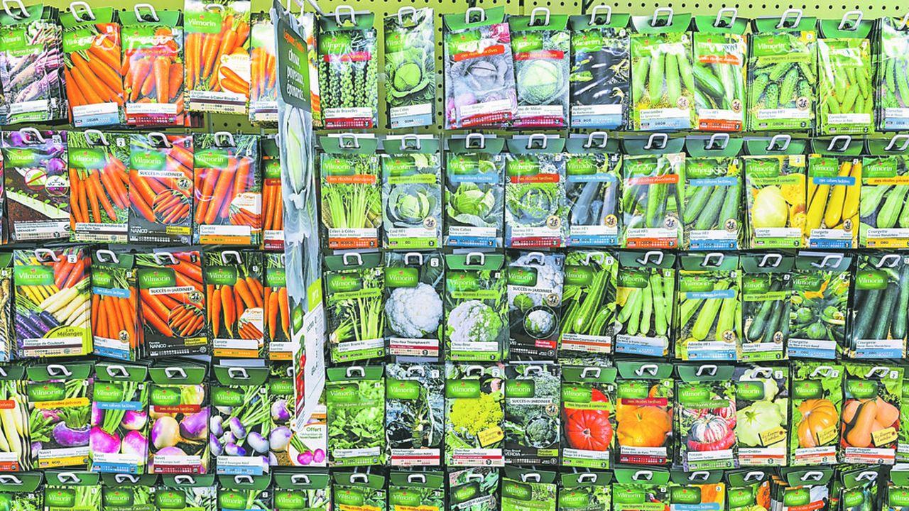 Vilmorin est numéro deux mondial en semences potagères et sixième pour les semences de grandes cultures.