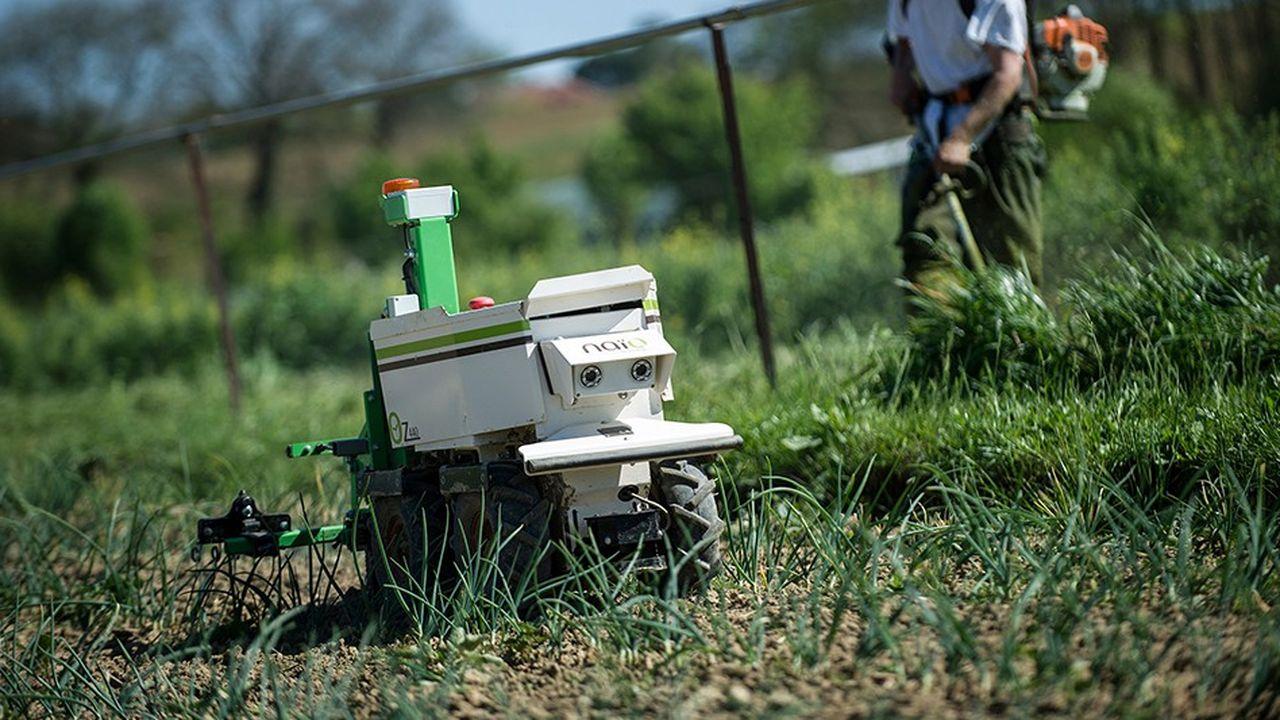 Guidés parGPS et lidar, les robots électriques de Naïo se déplacent seuls dans les champs.