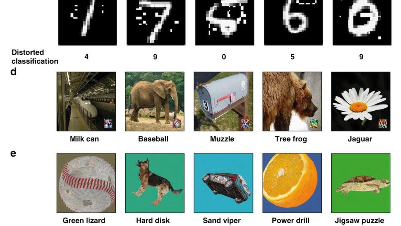 Exemples d'images antagonistes utilisées lors des expériences, les noms sous les photos correspondent aux catégories trouvées par la machine.