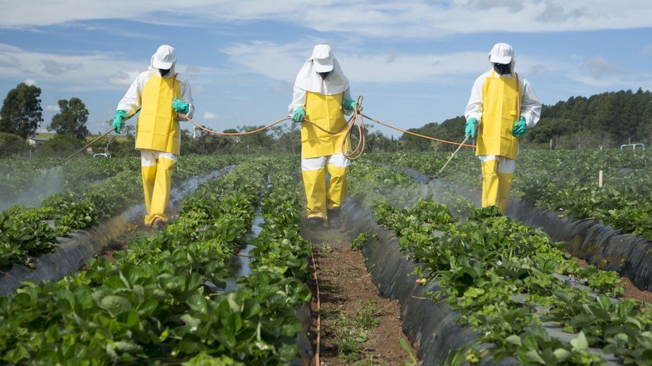 Les perturbateurs endocriniens ont été identifiés dès 1996 par l'Union européenne comme un risque pour la santé et l'environnement.