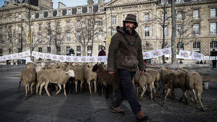 Manifestation de bergers place de la République, à Paris, le 18décembre 2018.