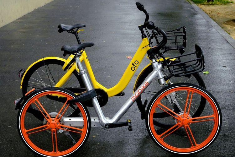 Les vélos d'Ofo et Mobike étaient géolocalisables sur smartphone.