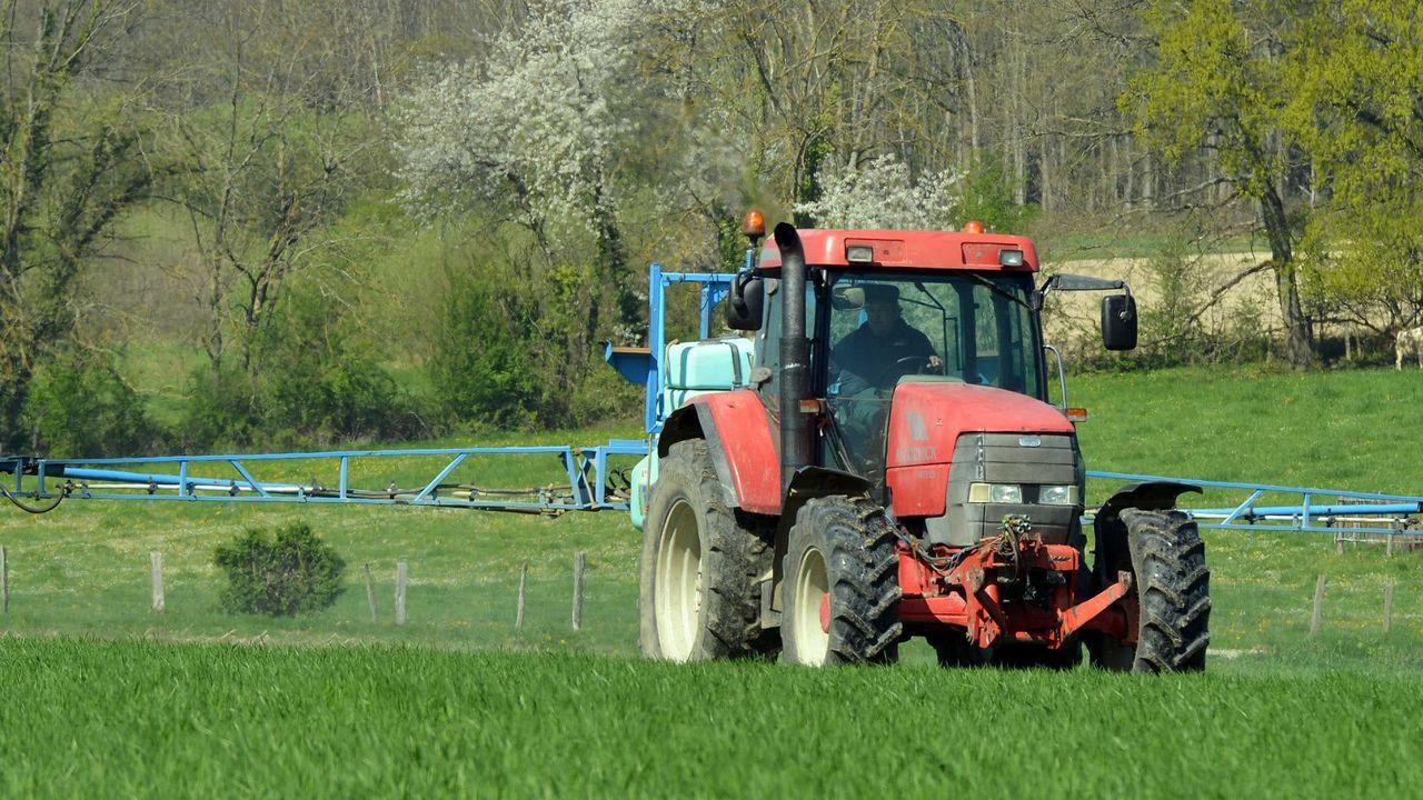 Opinion | Glyphosate et agriculture durable ne sont pas antinomiques