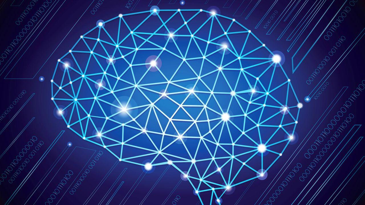 La politique par le prisme des neurosciences