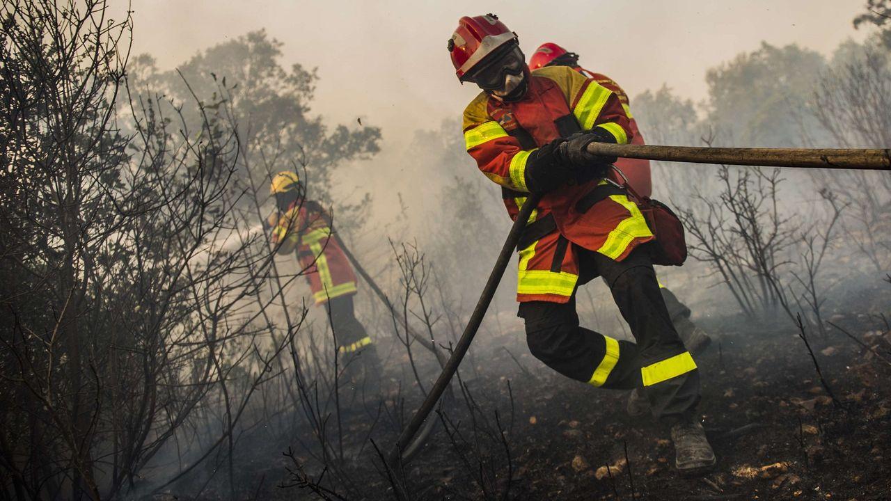 Dieux du stade et citoyens engagés : rapide portrait des sapeurs-pompiers