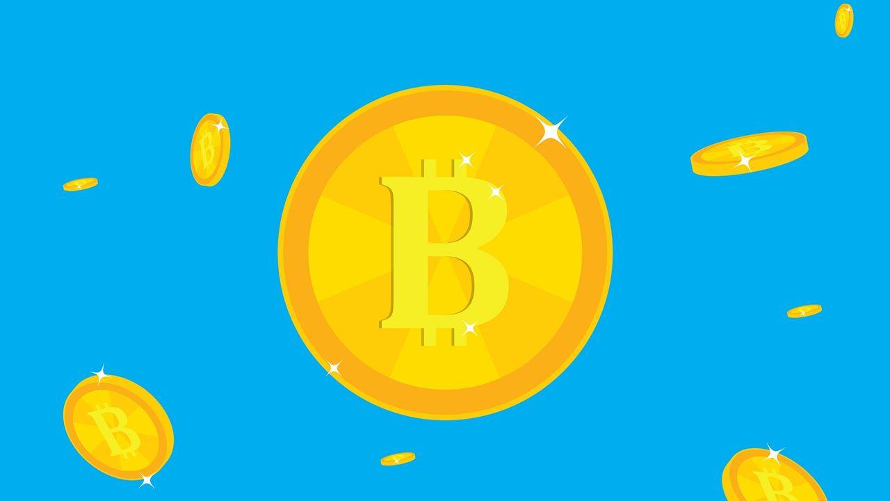 Petit précis à l'usage de ceux qui veulent investir dans les crypto-monnaies