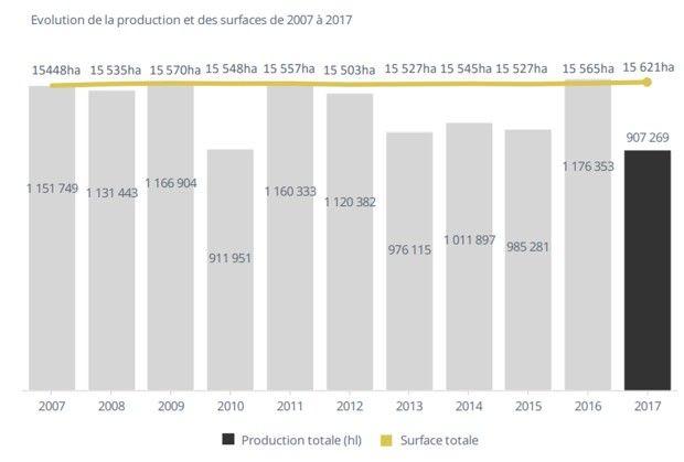 La production de vin en Alsace