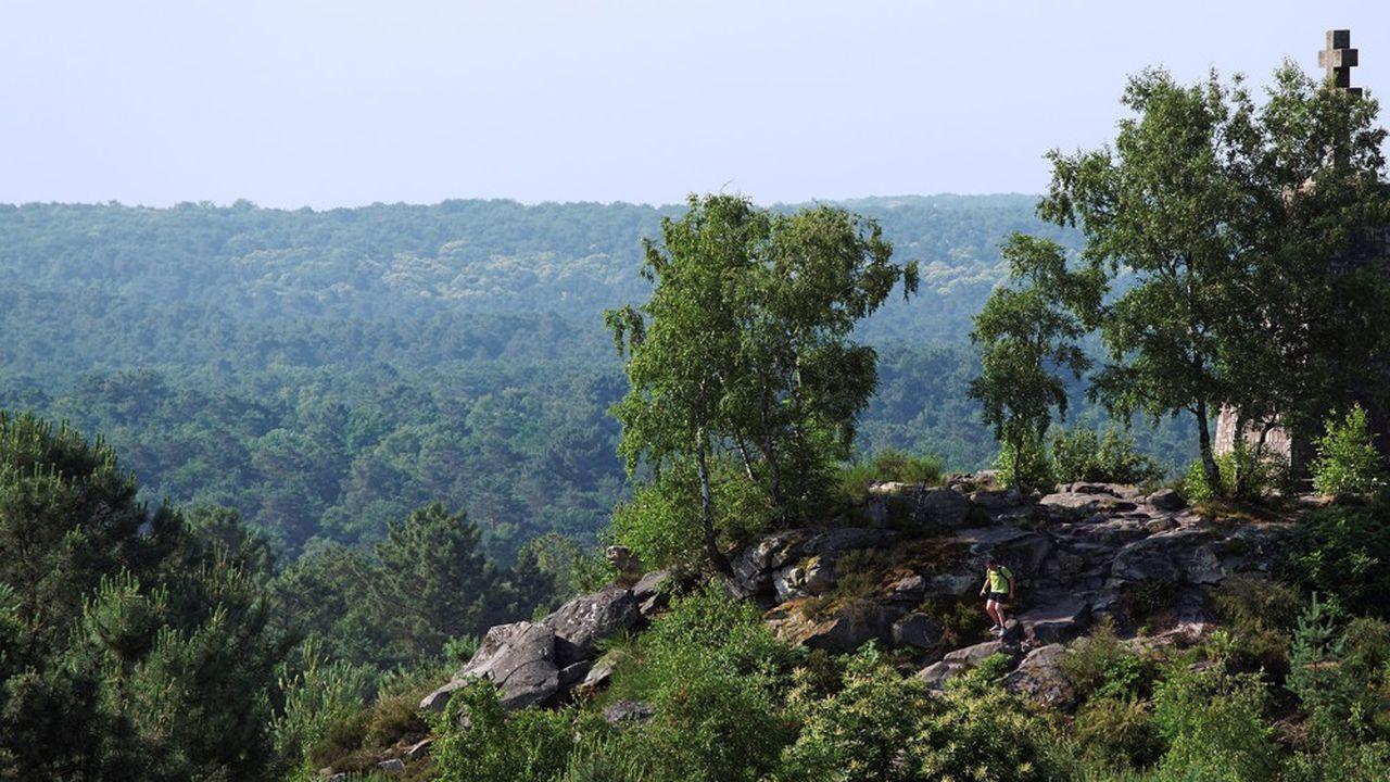 La forêt domaniale de Fontainebleau s'étend sur 16.723 hectares.