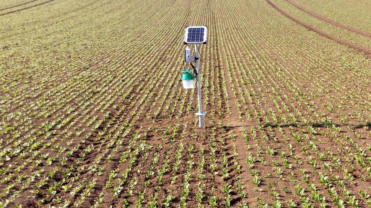 ENEDIS_TC_LESECHOS_Une plateforme pour améliorer la qualité des exploitations agricoles.jpg