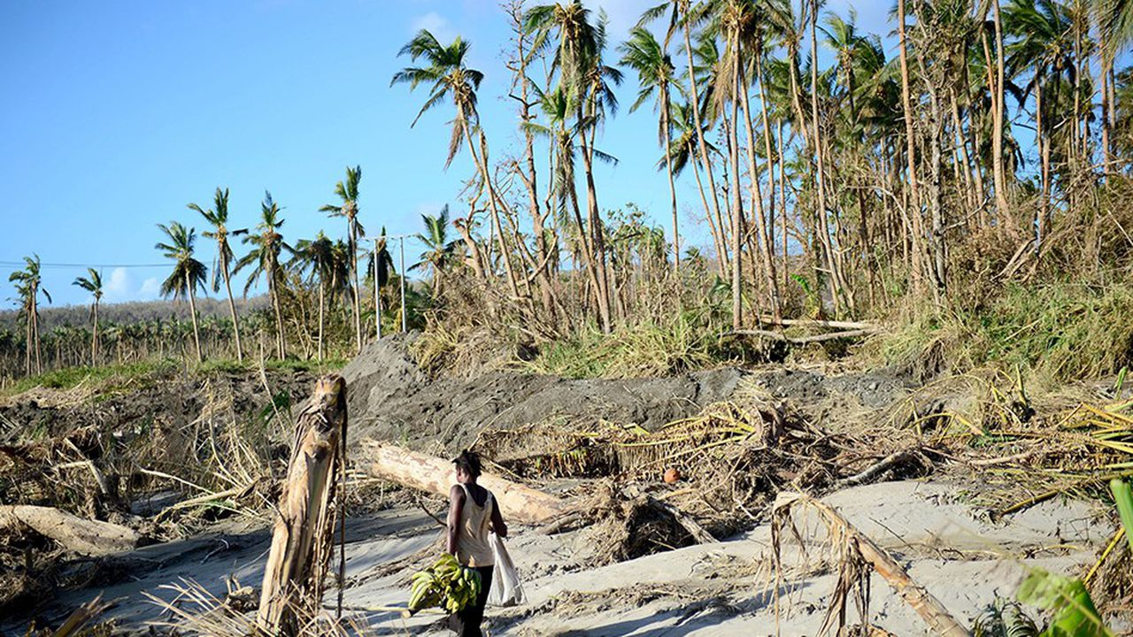 L'archipel de Vanuatu, dans le Pacifique sud, compte parmi les territoires les plusexposés au changement climatique. Situé à fleur d'eau et sur la trajectoire des cyclones, il est de plus en plus menacé de submersion marine.