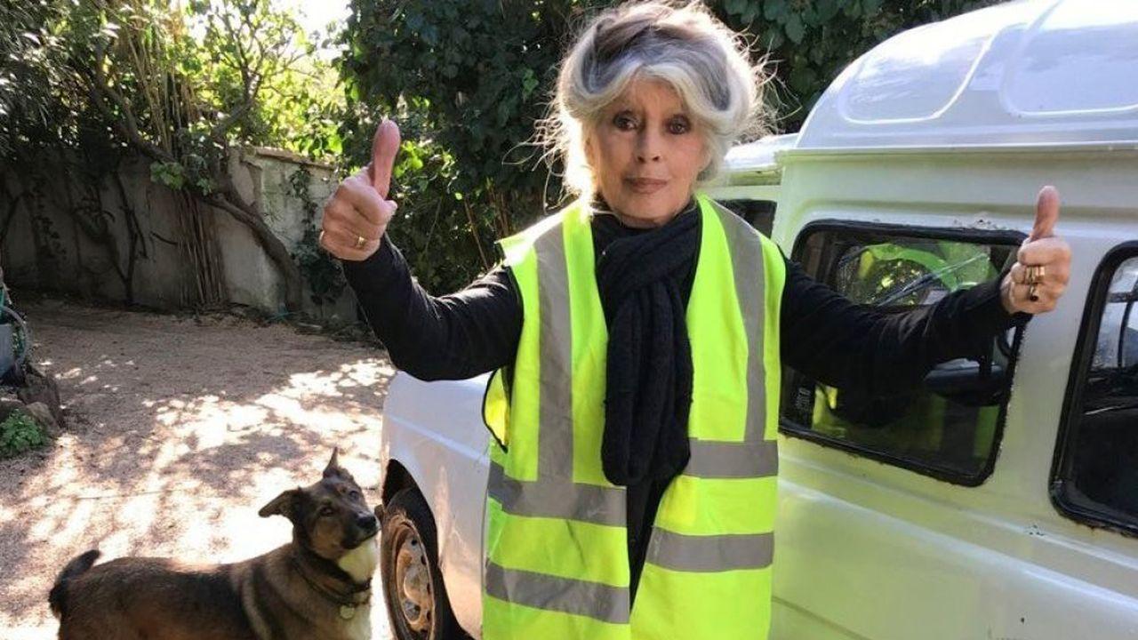 Et Dieu créa Brigitte Bardot…