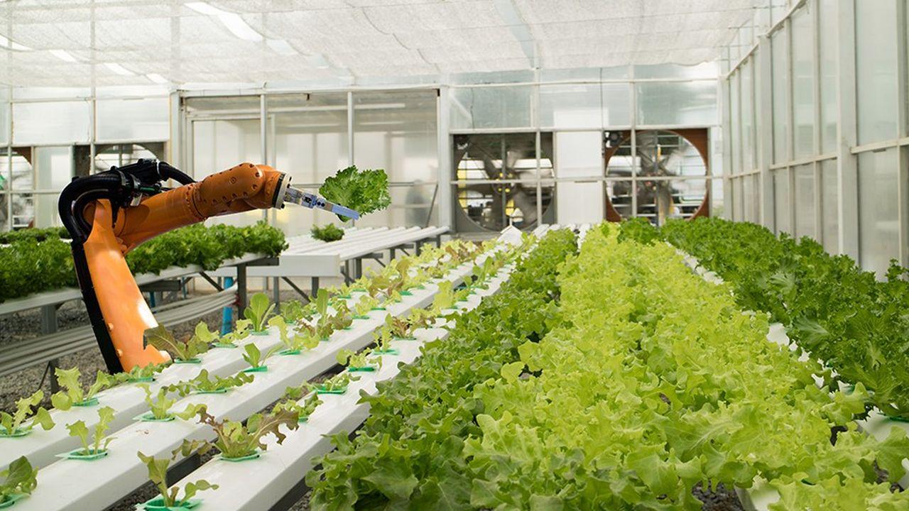 Pour InVivo, la prochaine révolution de l'agriculture passe par sa digitalisation et l'utilisation de «l'extraordinaire richesse que représentent les données agricoles».