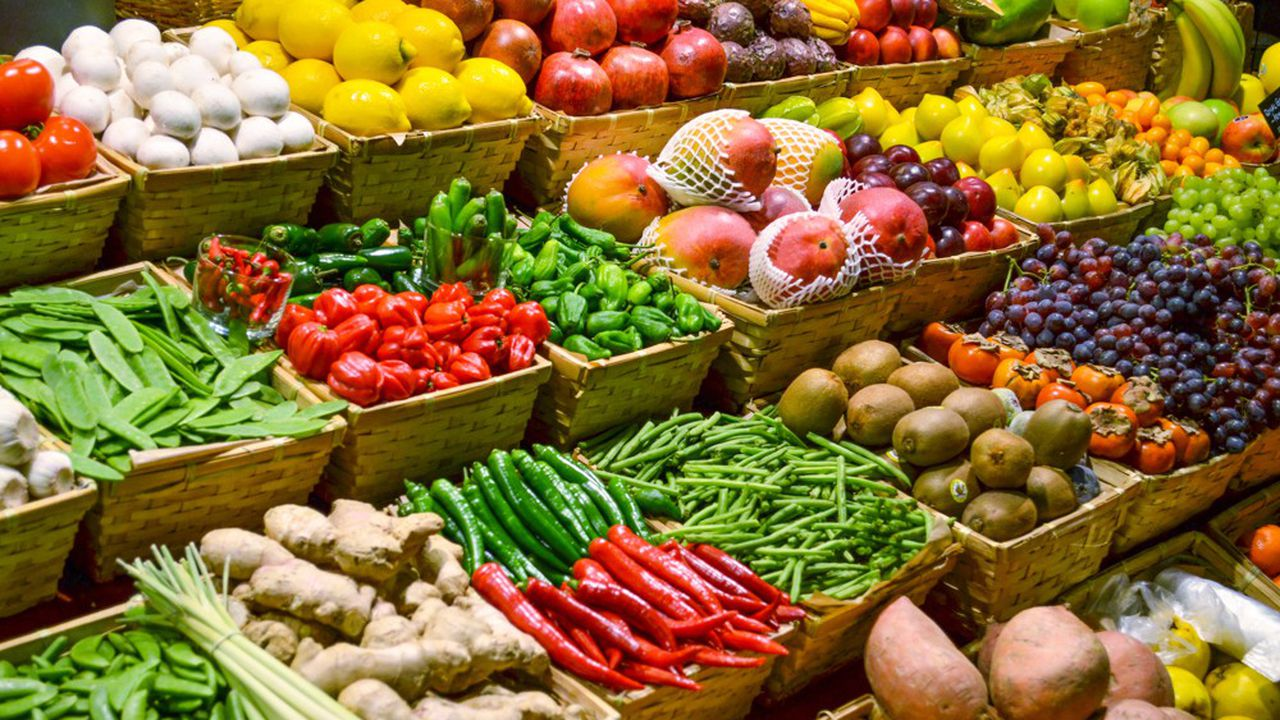 «L'excédent de la balance commerciale repose sur un nombre trop réduit de produits (alcool, céréales, lait)», souligne la Cour des comptestandis que la France est importatrice nette de nombreux produits dont les fruits et légumes pour 8,6milliards d'euros.