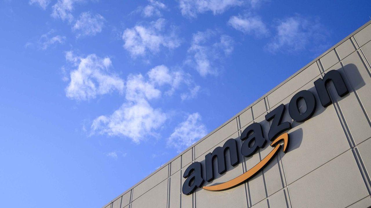 En contrepartie de ses avantages, Amazon s'est notamment engagé à laisser aux pays d'Amazonie la jouissance de plusieurs noms de domaine dérivés, «à des fins non commerciales».