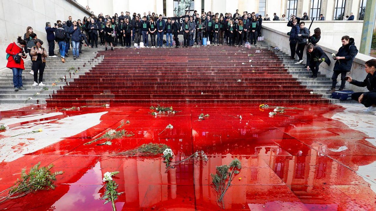 L'une des actions de l'ONG «Extinction rebellion» au Trocadero, à Paris.