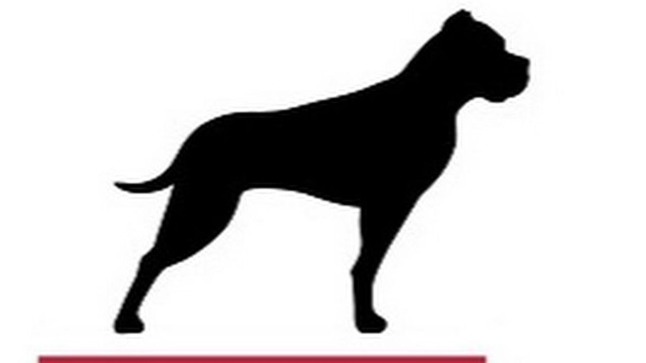 GP Bullhound.jpg