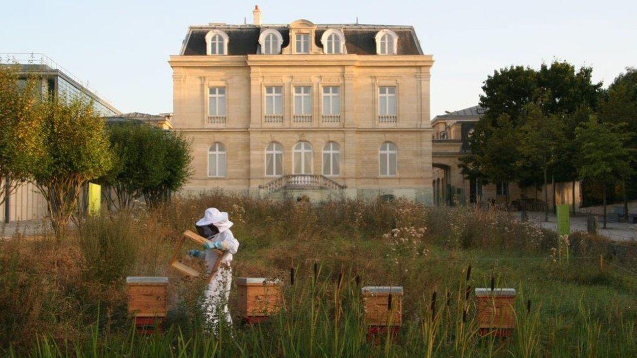 La décision de Sceaux d'interdire le glyphosate concerne les jardins publics mais les particuliers ou les propriétaires d'espaces verts.