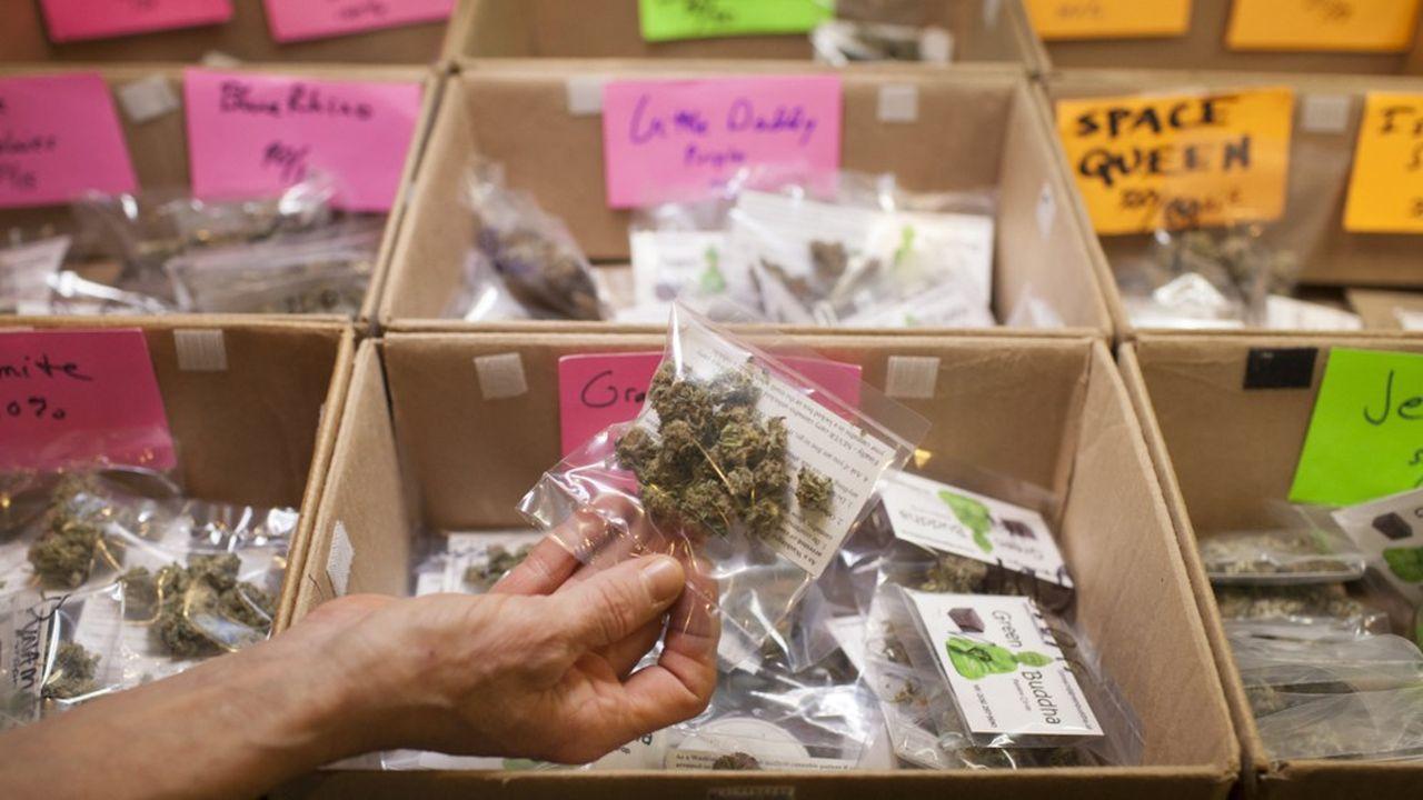 Pour l'instant, l'exécutif se dit favorable à une utilisation du cannabis à des fins uniquement thérapeutiques, dans le cas de certains traitements.