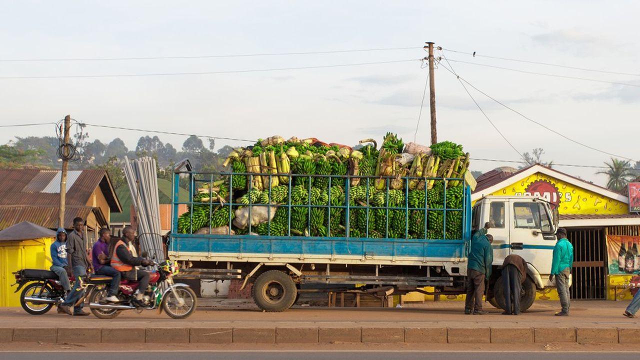 Le commerce entre les pays africains membres dela zone de libre-échange devrait progresser d'un tiers environ, une fois les droits de douane abaissés.
