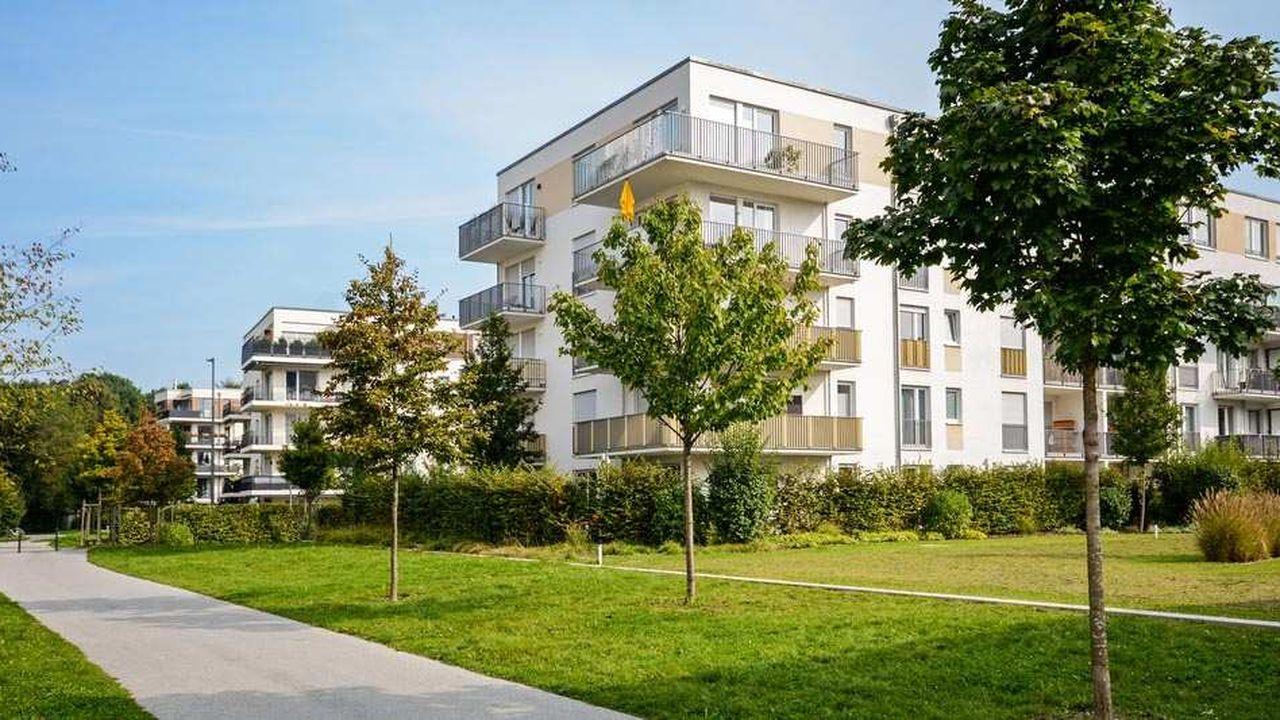 2065845_immobilier-neuf-les-tops-et-les-flops-web-tete-0211809120157.jpg