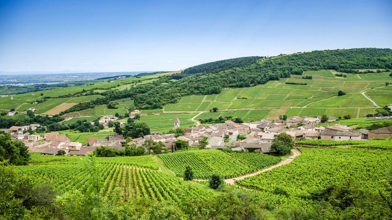L'hectare se vend à partir de 10.000euros et peut monter jusqu'à plus de 3millions d'euros pour un grand cru.