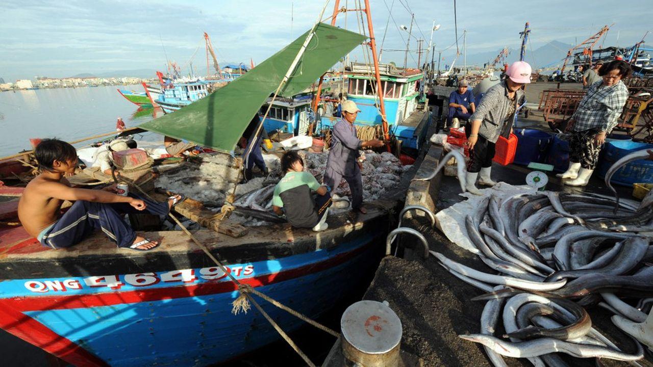 L'accord de libre-échange entre le Vietnam et l'Union européenne va permettre à Hanoï d'exporter davantage de ses produits de la pêche vers le Vieux Continent.
