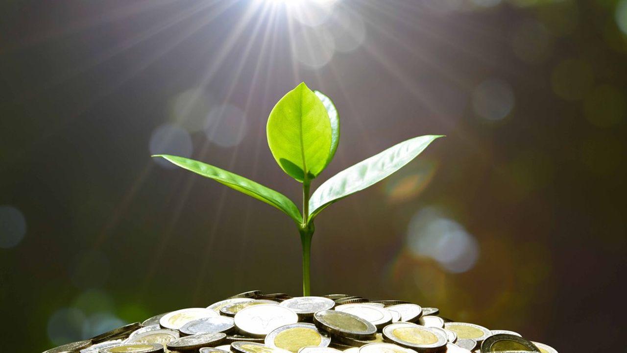 Plus encore que la finance verte, l'investissement à impact souffre d'un manque de définitions claires.