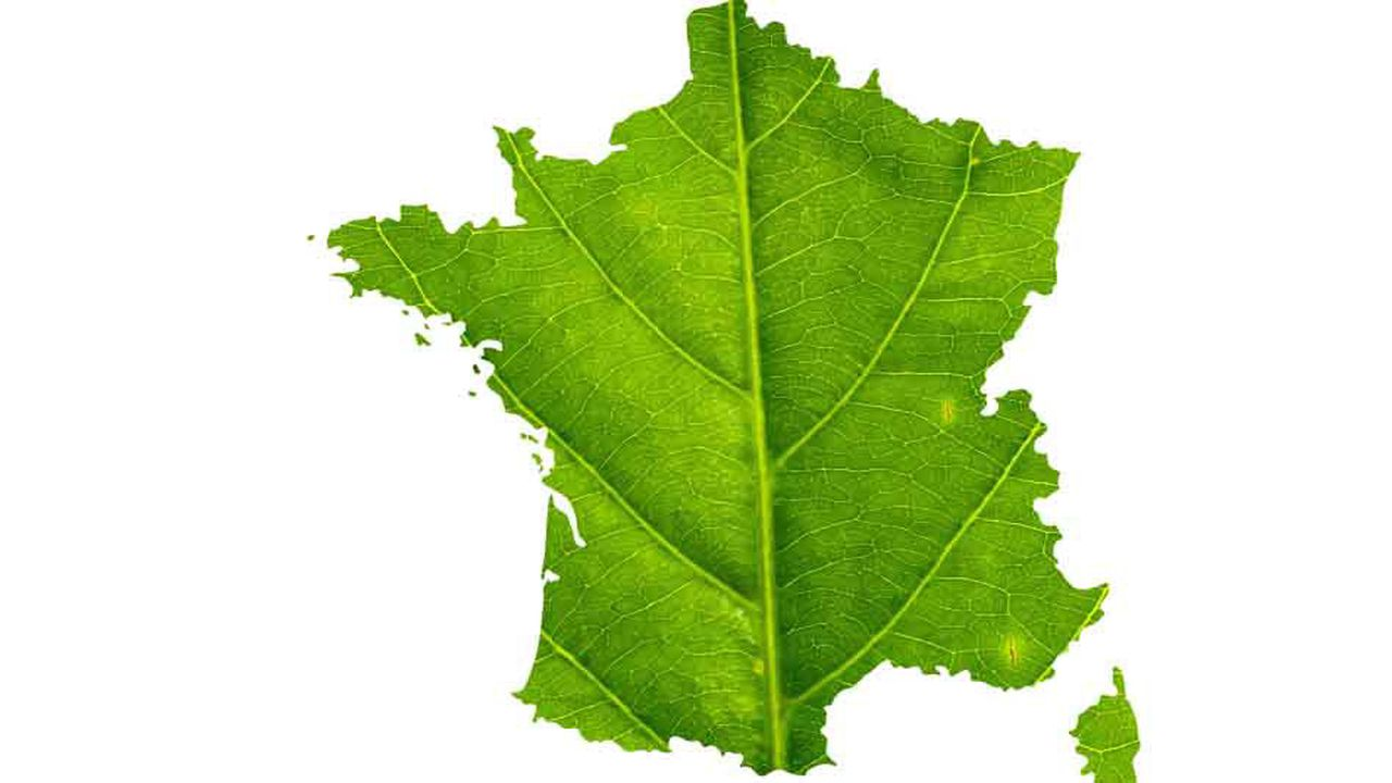 La France, comme les 192 autres membres des Nations unies, s'est engagée à réaliser 17 Objectifs de développement durable d'ici à 2030.