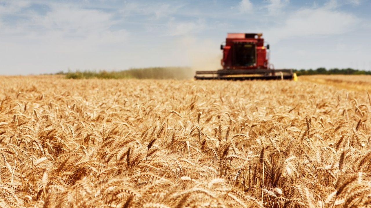 Les innovations sont testées sans une ferme céréalière de 440 hectares.