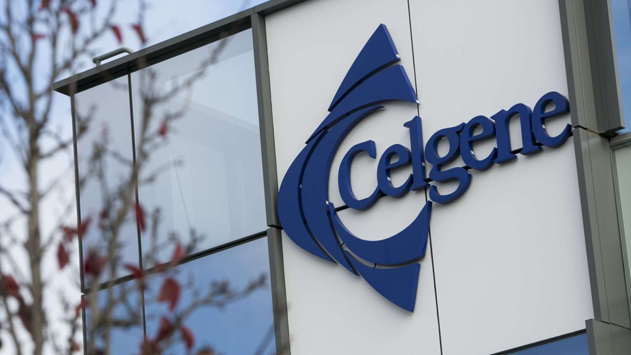 Celgene a commencé, il y a un an, à inclure les premiers patients français atteints de myélome multiple, dans ses essais de Phase III, auxquels participent les CHU de Nantes et de Lille