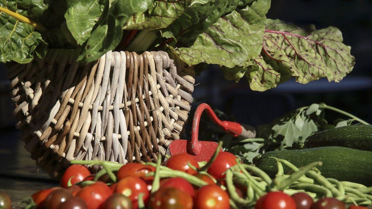 3.000 producteurs ont investi dans le capital de la SAS qui exploite le Mas des Agriculteurs.