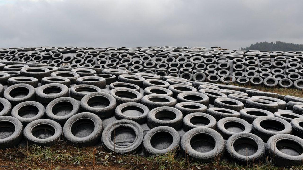 Des pneus usagés utilisés pour recouvrir les tas d'ensilage destiné àl'alimentation du bétail, dans un champ. Une pollution qui n'est pas que visuelle car elle met aussi en danger la vie des bovins.
