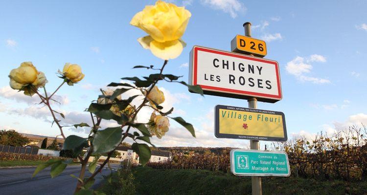 Jay-Z a racheté pour près de 520millions la marque de champagne Armand de Brignac, produite dans la ville française de Chigny-les-Roses.