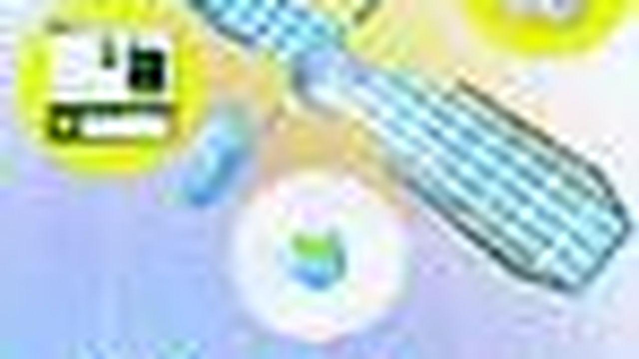 ECH18601568_1.jpg