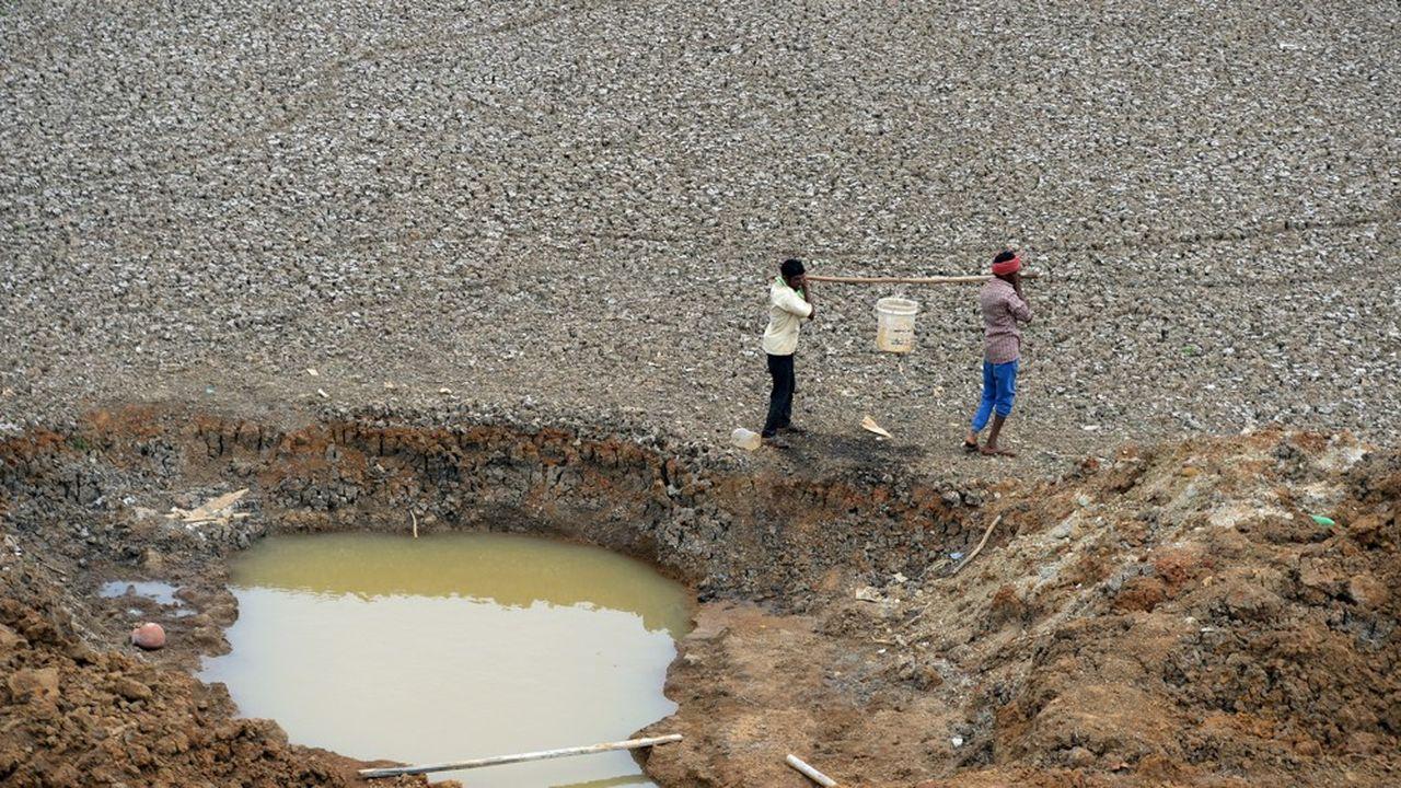 La sécheresse est la pire, de mémoire d'homme, dans l'Etat du Tamil Nadu. Sa capitale reçoit moins des deux tiers des 830millions de litres d'eau qu'elle utilise normalement chaque jour.